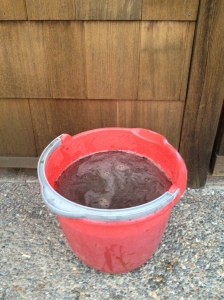 Nothing works better for scrubbing socks than a bucket full of mud!